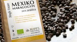 Mexico Maragogype Bio Arabica