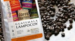 Lampocoy Kaffee Arabica 500 gr.